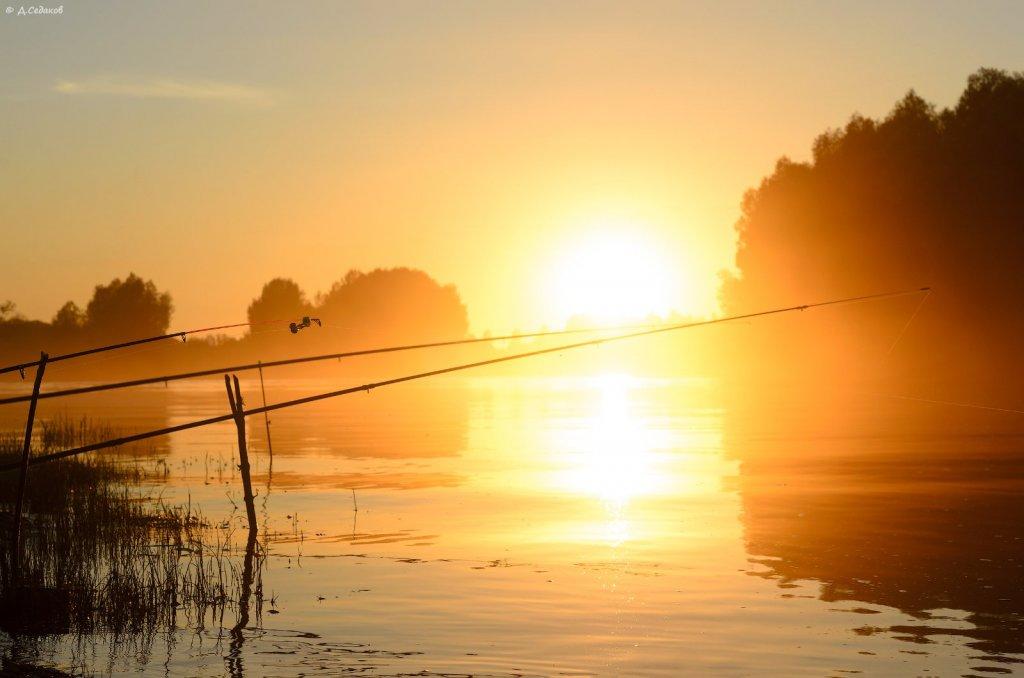 древней доброе утро рыболовы картинки сидящих ней заключенных