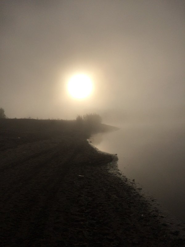 Туман, рассвет