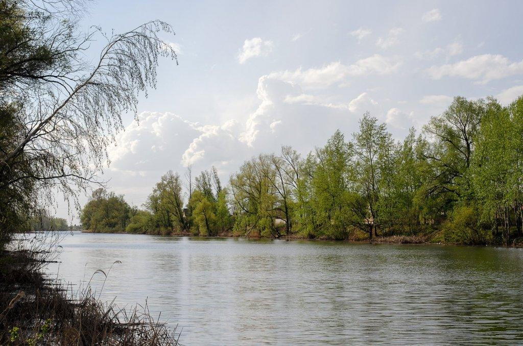 Кривое озеро Зачетная щука