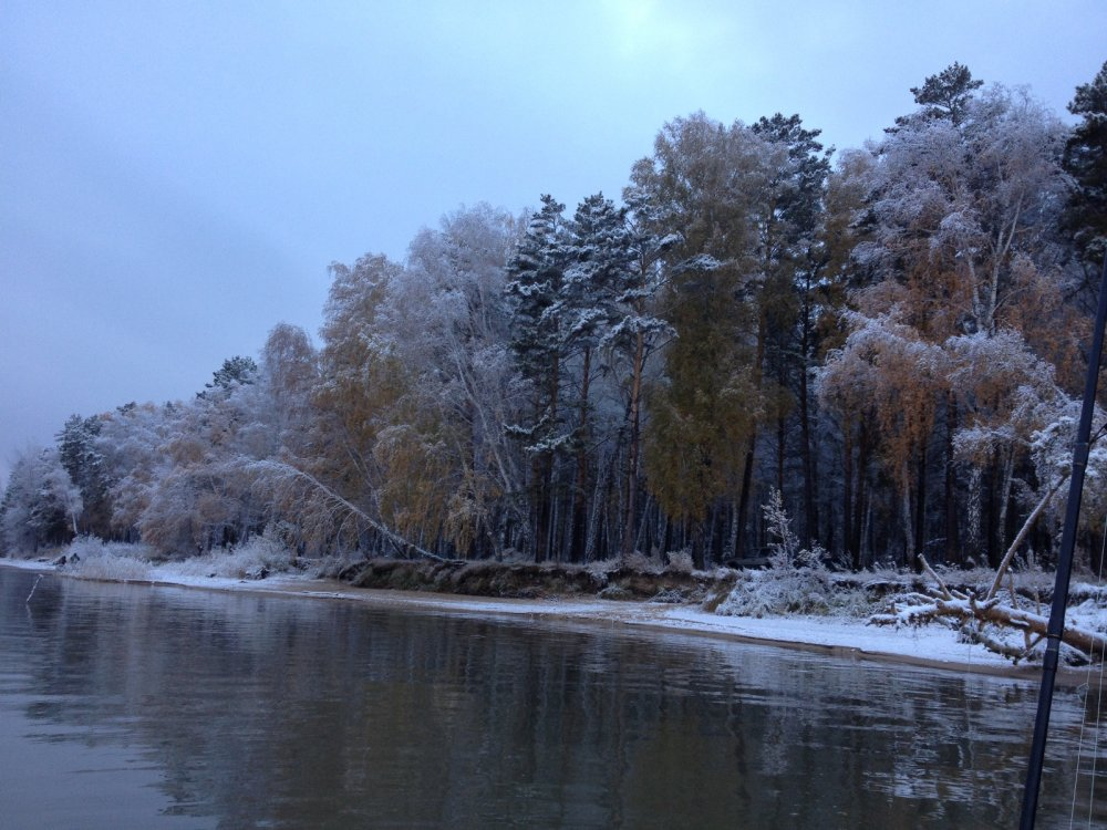 Между зимой и летом