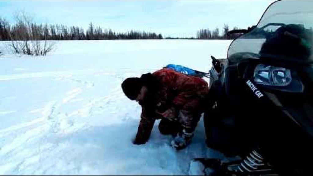 Супер рыбалка(Окунь и Сиг на зимнюю удочку.)