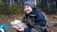 Ловля леща на реке в ноябре | Рыбалка с Родионом