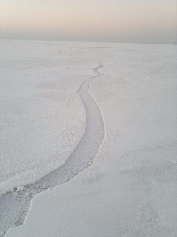 Первый выход на лед   в новом сезоне