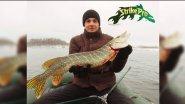 Клёвая рыбалка на щуку в ноябре. Ловля на воблеры Strike Pro. Отчет с рыбалки