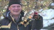 Ловля осеннего окуня на микроджиг на малой речке. Где искать окуня осенью?