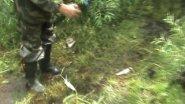 ловля ленка 2