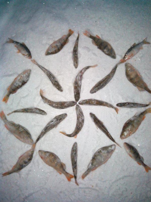 Всех рыбаков.... С новым годом! ;)