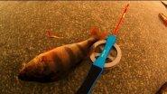 Зимняя рыбалка на окуня: блесна VS гвоздешарик