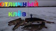 Ловля Щуки на Жерлицы,Ловля Щуки на Живца -Зимняя Рыбалка на Щуку!!!