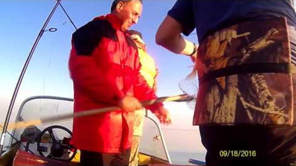 Ловля судака. Закрытие летнего рыболовного сезона.
