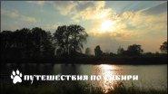 Один день уходящего лета. Алтайский край, Усть-Пристанский район, река Курья ...