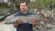 Трофейно    промышленная рыбалка на щуку  на спининг  СЕРИЯ 2