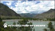 Горный Алтай, Чуй-Оозы, место слияния рек Чуя и Катунь...