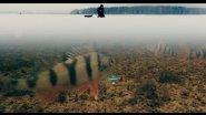 Ловля Окуня Зимой на Балансир Рапала | Зимняя рыбалка 2017