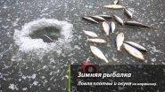 Зимняя рыбалка  Ловля плотвы и окуня на мормышку
