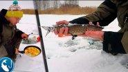 Охота на щуку Ловля на жерлицы на карьере Готовим на природе Омлет по испански | Рыбалка с Родионом