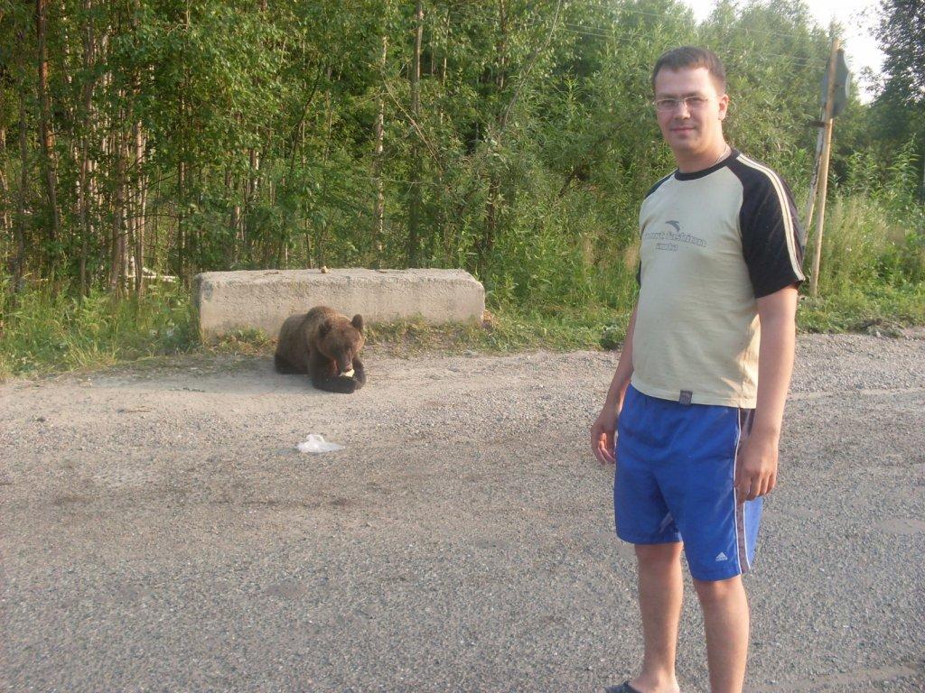 Мой личный опыт в общении с диким медведем...