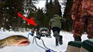 Ну и рыбалка! Ловля Налима Зимой на Жерлицы - Зимняя Рыбалка на Налима с Донками (Ночная Рыбалка)