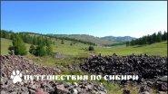 Горный Алтай, Пазырыкские курганы...
