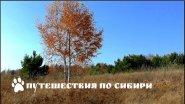 Осенние контрасты, Алтайский край, Троицкий район...