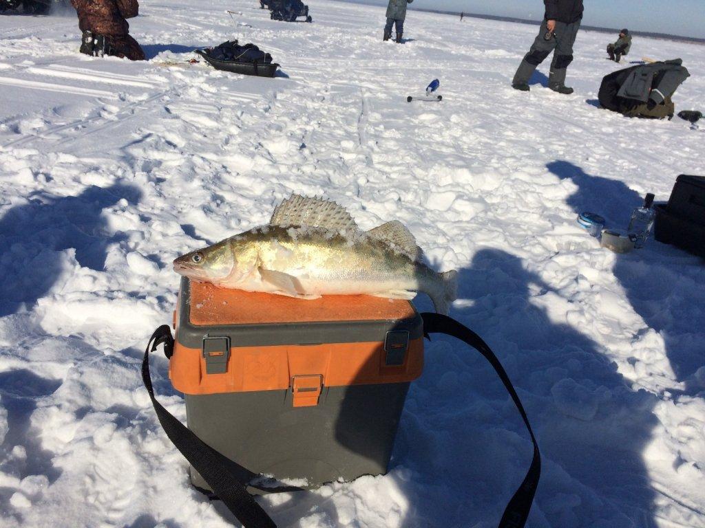 И снова оранжевый чемоданчик)))