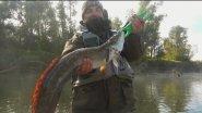 Вспоминая о лете. Одна из самых ярких рыбалок прошлого сезона.
