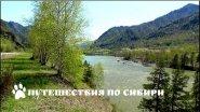 Горный Алтай, весенняя Катунь...