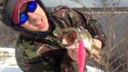 Щука на спиннинг.Рыбалка весной. Разловил Pigshad