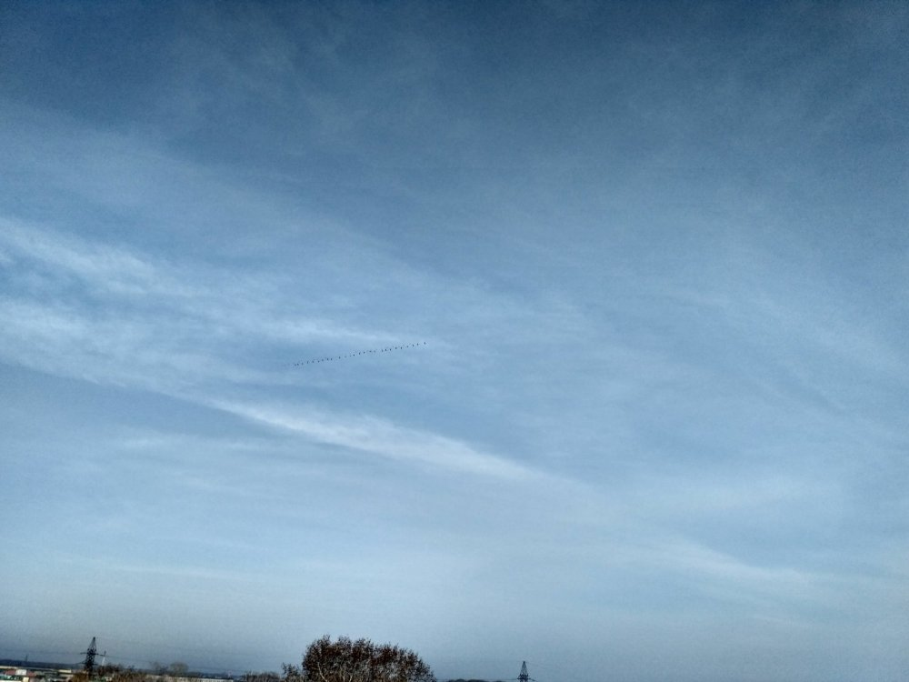 27.04.17г. над озером на Юго-западном.