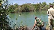 Моя рыбалка 4-12. Сазан.