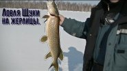 Рыбалка на щук жерлицами.
