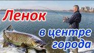 Рыбалка в центре Иркутска