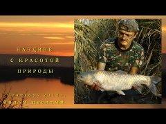Моя рыбалка 10-12. Сазан, белый амур.
