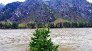 Берег реки Катунь в горах Алтая - 2017 в 4К.