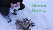 Рыбалка зимой на балансир. 2017. Ловим окуня.