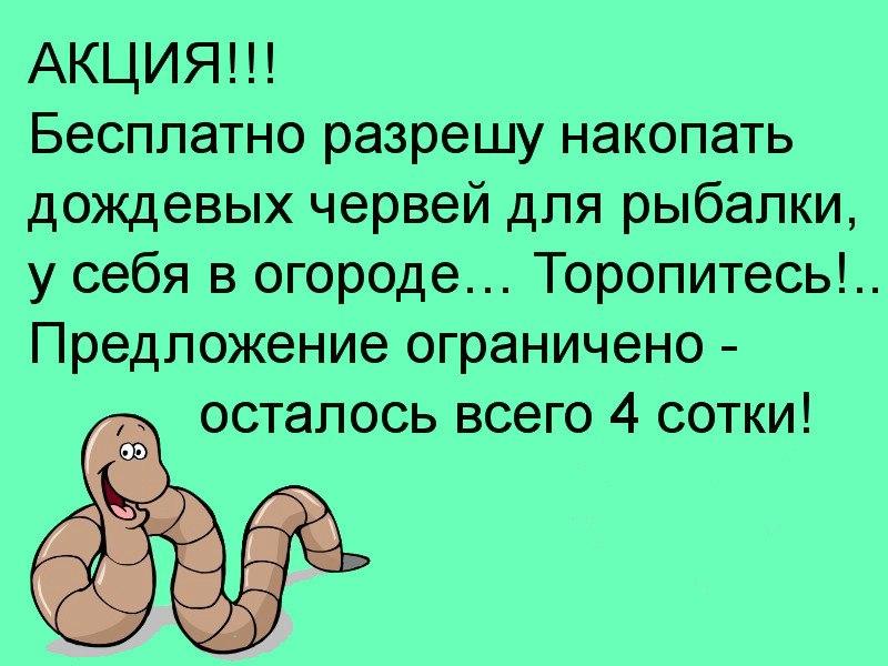 Внимание!!!Акция))))