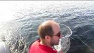 TROLLING. BEST FISHING. Лучшая летняя  рыбалка  2016 года на Ладоге