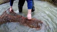 Проверка морды (верши), березовый сок, неудачная рыбалка, Кубайка, плетение мормышки