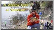 В степной Урал за