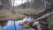 Рыбалка на малых речках весной. Открываю сезон 2017
