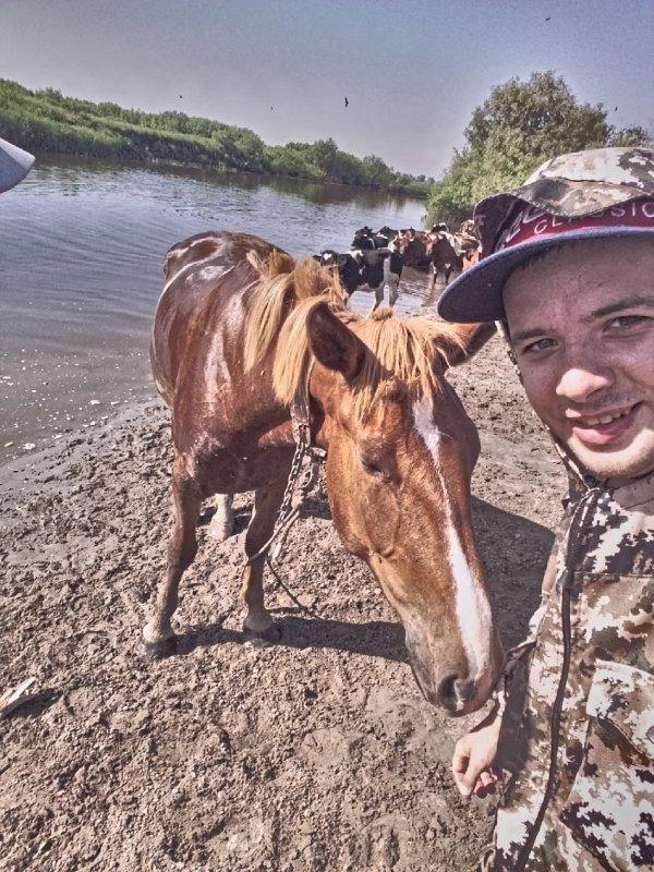 Колыванская постушья лошадка))