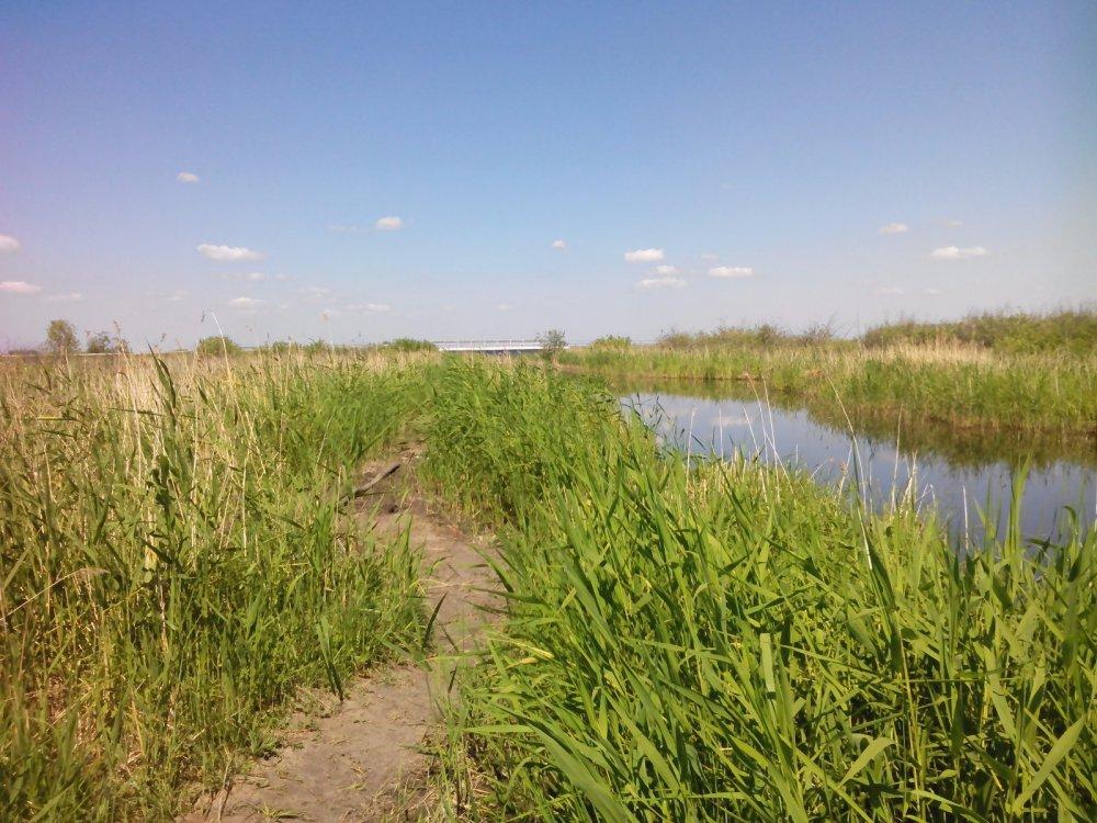 долина реки Канал в Тихомирово