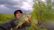 Ловля окуня из под ондатры / Карась на микроджиг! / Вот это рыбалка!
