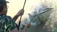 Моя рыбалка 3-13. Белый амур.