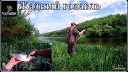 Рыбалка на фидер на двух реках. Жадный голавль.(LiveFishing)