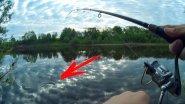 Рыбалка на крупного карася, который рвёт леску / Ловля карася летом 2017