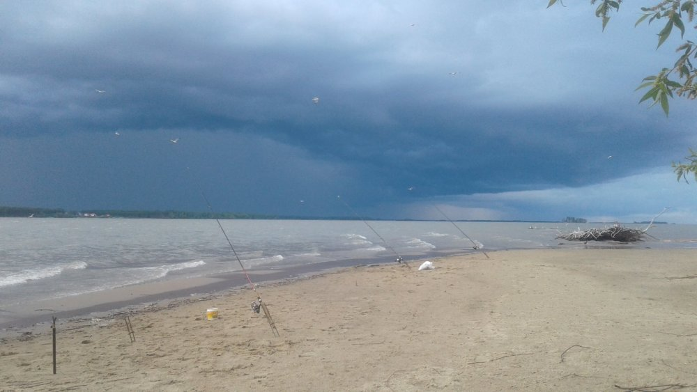 Буря надвигается!