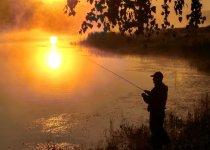 В одном фото вся Рыбалка
