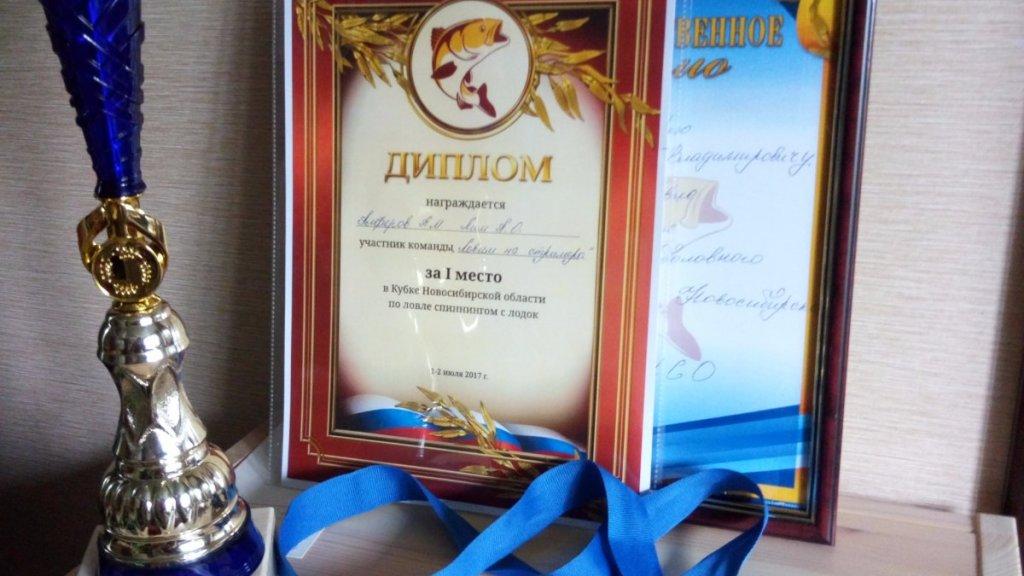 Отчёт команды #ЛовимНаСтримера с Кубка НСО 2017