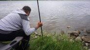 ловля леща на пруду